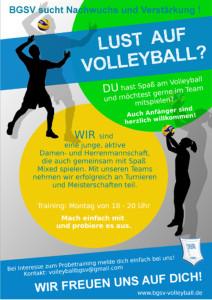 kleiner Plakat Lust auf Volleyball